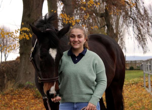 Pferd schnuppert an Frauenhand