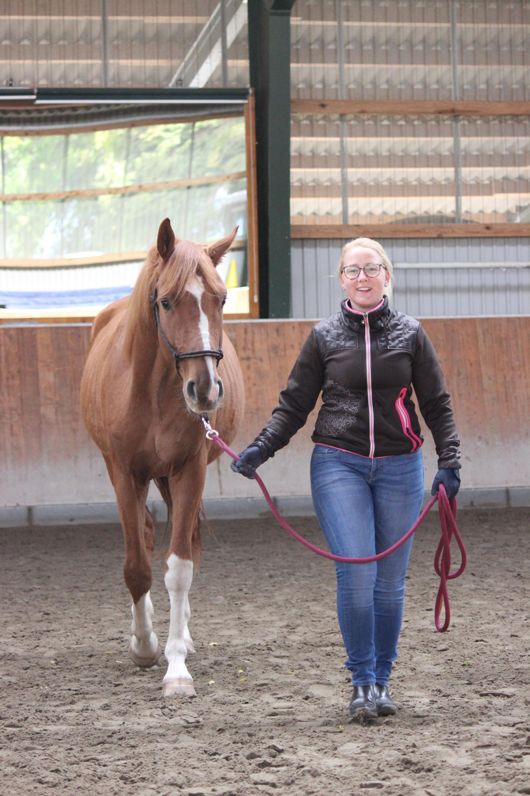 Frau führt junges Pferd
