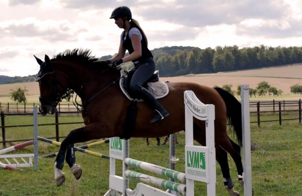 Frau springt mit Pferd