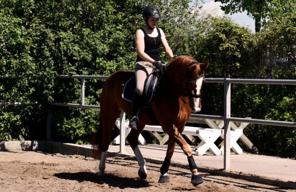 Frau reitet Pferd im Trab
